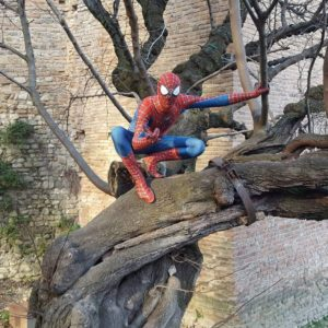 Antonio Baraccani Spiderman 5
